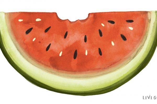 Livi Gosling Watermelon colour