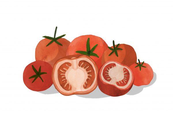 TomatoesCOLOUR